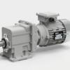 Мотор-редуктор цилиндрический 802C (i=43.31)-32.3-B5-3.0-836--380-50 (4P) sf=1.1 – изображение 2