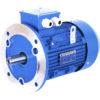 Электродвигатель асинхронный трехфазный GL112M1-10 – изображение 3