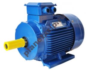 jelektrodvigatel 300x235 - Чем частотно-регулируемые асинхронные двигатели должны отличаться от общепромышленных?